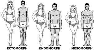 SOMATOTYPES - BENEFITS OF KNOWING YOUR BODY TYPE